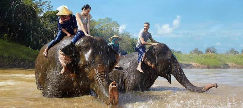 anantara-elephant
