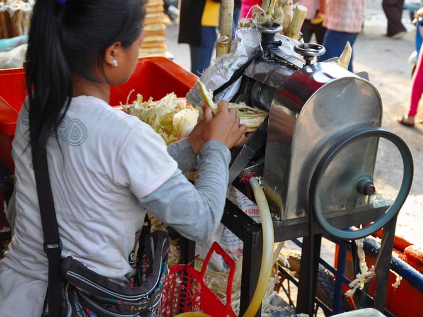 sugarcane-cambodia